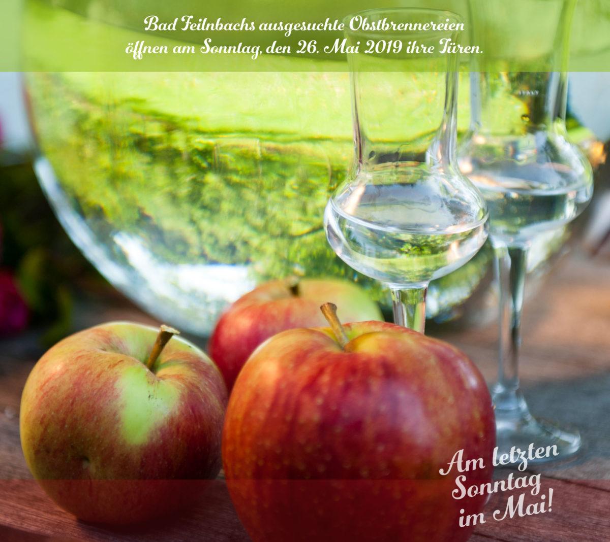 https://www.ktv-badfeilnbach.de/wp-content/uploads/2018/07/KT_Brenner_Key-Visual-2019-HL-ausgesuchte-Brennereien-1200x1068.jpg
